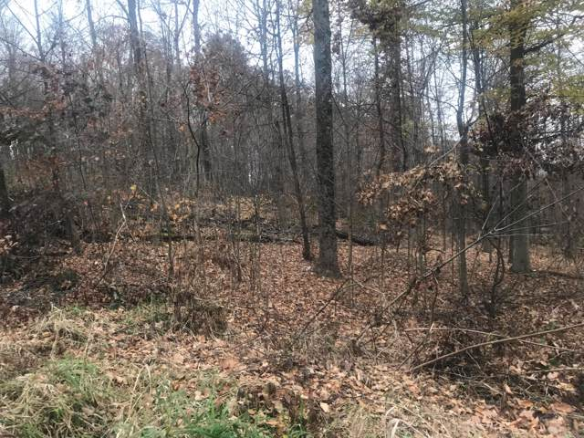 Lot 313 King Beach Terrace, Howard, OH 43028 (MLS #219042618) :: Shannon Grimm & Partners Team