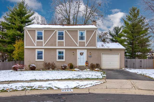 6485 Tassel Court, Westerville, OH 43081 (MLS #219042749) :: BuySellOhio.com