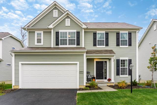 4803 Black Sycamore Drive, Columbus, OH 43231 (MLS #219042832) :: RE/MAX ONE