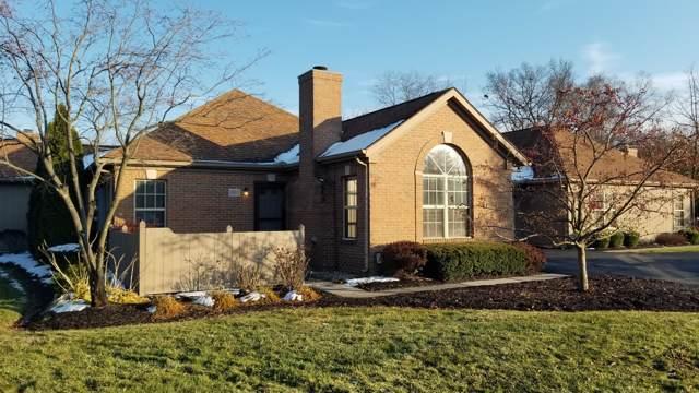 4963 Berry Leaf Place, Hilliard, OH 43026 (MLS #219042842) :: Keller Williams Excel