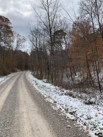 0 Twp Rd 228, New Straitsville, OH 43766 (MLS #219043100) :: Core Ohio Realty Advisors