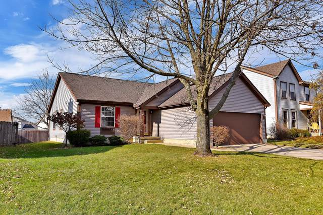 775 Tricolor Drive, Reynoldsburg, OH 43068 (MLS #219043510) :: The Raines Group