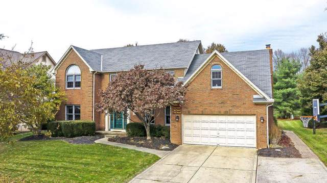 1172 Hooverview Drive, Westerville, OH 43082 (MLS #219043580) :: Exp Realty