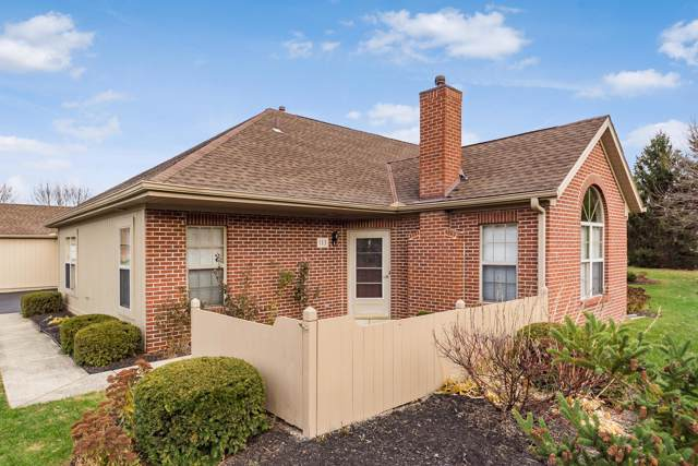 113 Potters Shed Drive, Reynoldsburg, OH 43068 (MLS #219043598) :: RE/MAX ONE