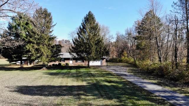 2024 Reynoldsburg New Albany Road, Blacklick, OH 43004 (MLS #219044196) :: CARLETON REALTY