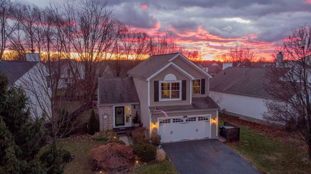 8401 Old Ivory Way, Blacklick, OH 43004 (MLS #219044470) :: Signature Real Estate