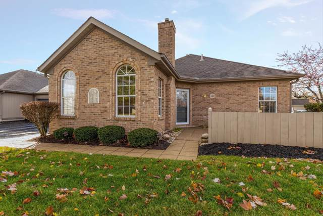 241 Windemere Place, Westerville, OH 43082 (MLS #219044573) :: Signature Real Estate