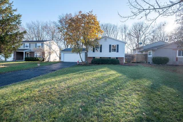 3969 Blueberry Hollow Road, Columbus, OH 43230 (MLS #219044608) :: Shannon Grimm & Partners Team
