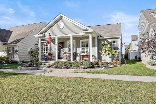 6129 Highlander Drive, Westerville, OH 43081 (MLS #219044618) :: Core Ohio Realty Advisors