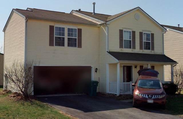 8219 Royal Elm Drive, Blacklick, OH 43004 (MLS #219044680) :: Signature Real Estate
