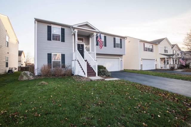 8135 Royal Elm Drive, Blacklick, OH 43004 (MLS #219044754) :: Signature Real Estate