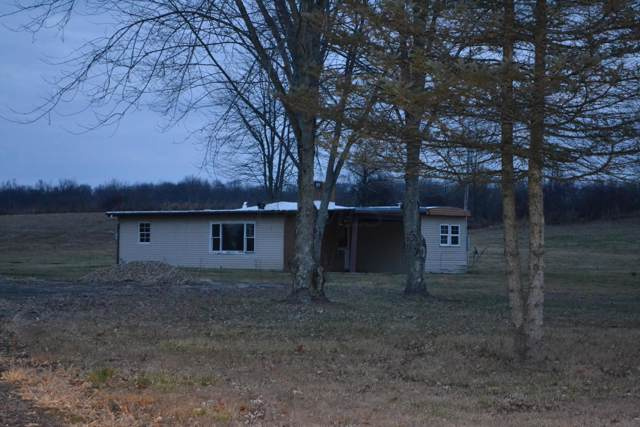 5321 Johnstown Road, Mount Vernon, OH 43050 (MLS #219044900) :: ERA Real Solutions Realty