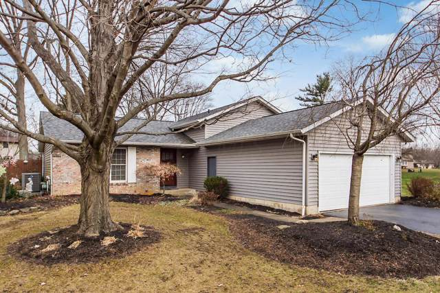 11448 Forest Lane Avenue, Pickerington, OH 43147 (MLS #219045275) :: RE/MAX ONE