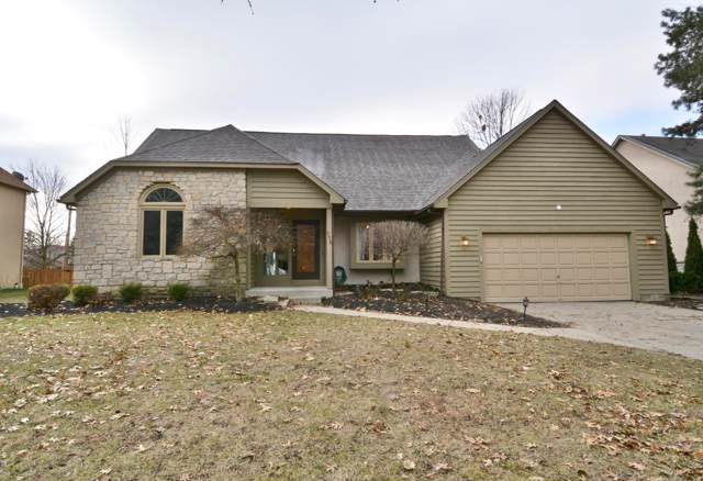 775 Collingwood Drive, Westerville, OH 43081 (MLS #219045285) :: RE/MAX Metro Plus