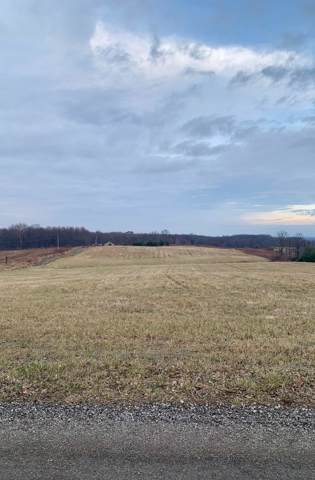 0 County Road 121, Fredericktown, OH 43019 (MLS #219045291) :: BuySellOhio.com
