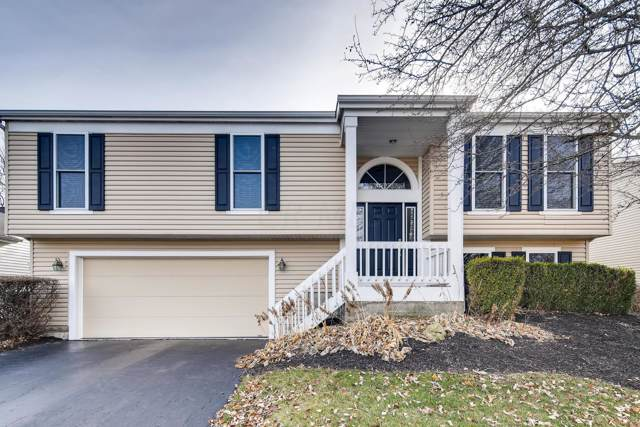 5235 Gillette Avenue, Hilliard, OH 43026 (MLS #219045305) :: ERA Real Solutions Realty