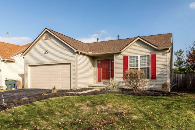 1388 Tenagra Way, Columbus, OH 43228 (MLS #219045363) :: Core Ohio Realty Advisors