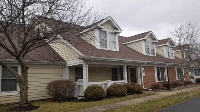 344 Shannon Lane, Granville, OH 43023 (MLS #219046190) :: Core Ohio Realty Advisors