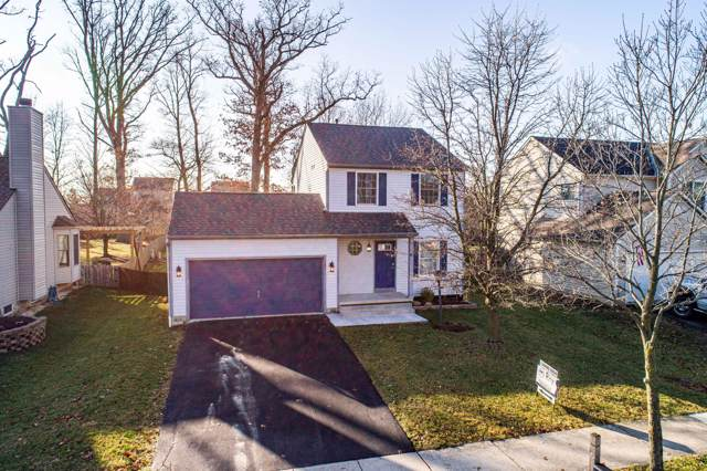785 Barberry Spur Avenue, Delaware, OH 43015 (MLS #220001338) :: Core Ohio Realty Advisors