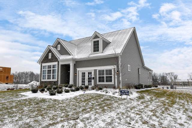 7260 Whimbrel Lane, Sunbury, OH 43074 (MLS #220001553) :: Exp Realty