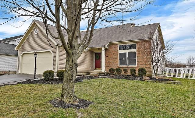 4437 Chukbuk Court, Hilliard, OH 43026 (MLS #220001813) :: Signature Real Estate
