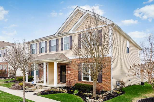 4696 Trumhall Drive, Grove City, OH 43123 (MLS #220002925) :: Keller Williams Excel