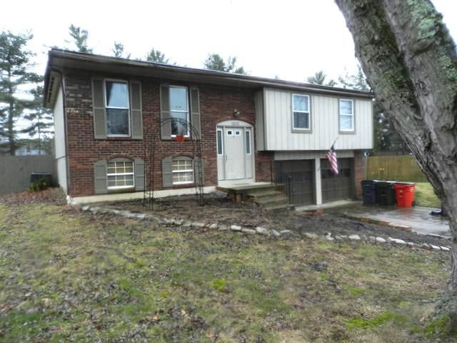 13372 Falmouth Avenue, Pickerington, OH 43147 (MLS #220003276) :: Signature Real Estate