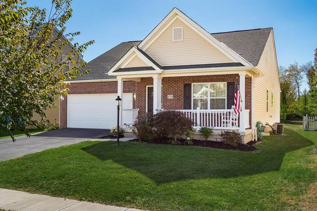 6729 John Drive, Canal Winchester, OH 43110 (MLS #220003499) :: Huston Home Team
