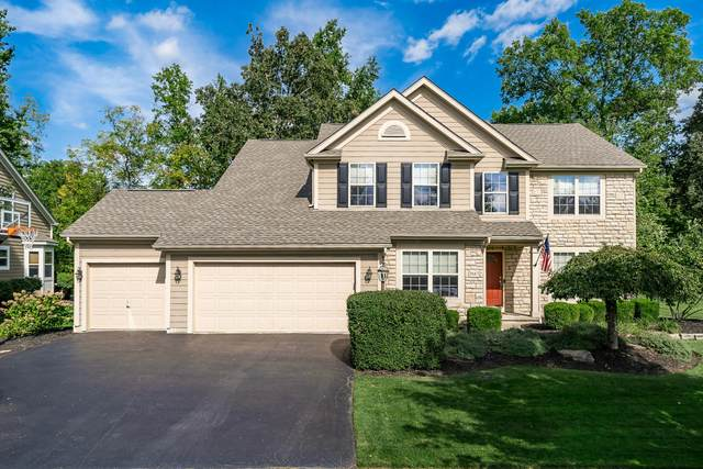 7687 High Wind Drive, Powell, OH 43065 (MLS #220004344) :: Huston Home Team