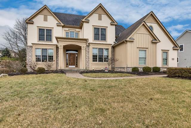 7730 Blue Fescue Drive, Westerville, OH 43082 (MLS #220004405) :: Huston Home Team