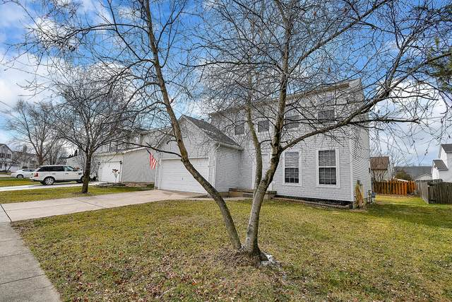 3201 Drake Avenue, Groveport, OH 43125 (MLS #220004625) :: Huston Home Team