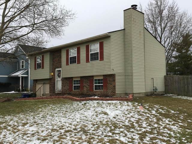 3191 Alderridge Court, Dublin, OH 43017 (MLS #220004841) :: RE/MAX Metro Plus