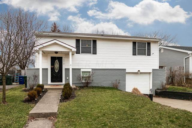 3672 Creekwood Avenue, Columbus, OH 43223 (MLS #220004936) :: RE/MAX Metro Plus