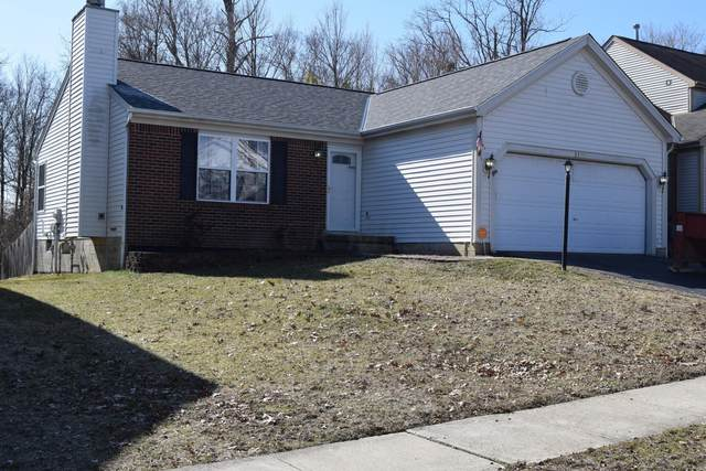 3179 Omega Drive, Columbus, OH 43231 (MLS #220005283) :: ERA Real Solutions Realty