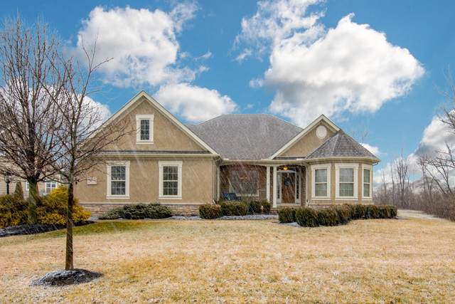 8917 Shaffer Drive, Powell, OH 43065 (MLS #220005911) :: Exp Realty