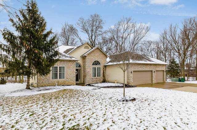 8250 Kristin Court, Lewis Center, OH 43035 (MLS #220005962) :: RE/MAX ONE