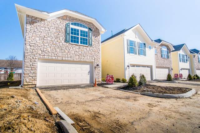 255 Lake Cove Drive, Delaware, OH 43015 (MLS #220006671) :: Shannon Grimm & Partners Team