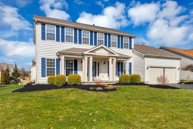 6299 Hermitage Drive, Westerville, OH 43082 (MLS #220006684) :: Julie & Company