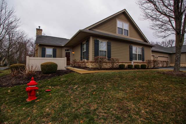 665 Albion Place, Westerville, OH 43082 (MLS #220006994) :: Core Ohio Realty Advisors