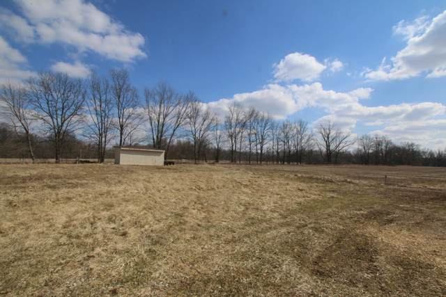 13100 N Old 3C Hwy, Sunbury, OH 43074 (MLS #220007265) :: Susanne Casey & Associates