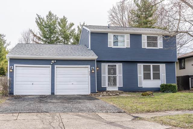 8657 Ripton Drive, Powell, OH 43065 (MLS #220007547) :: Signature Real Estate