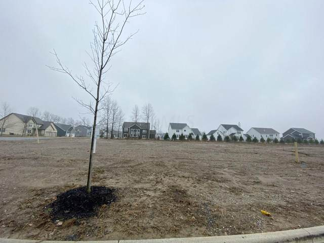 0 Red Oak Lot #8591, Lewis Center, OH 43035 (MLS #220007607) :: ERA Real Solutions Realty