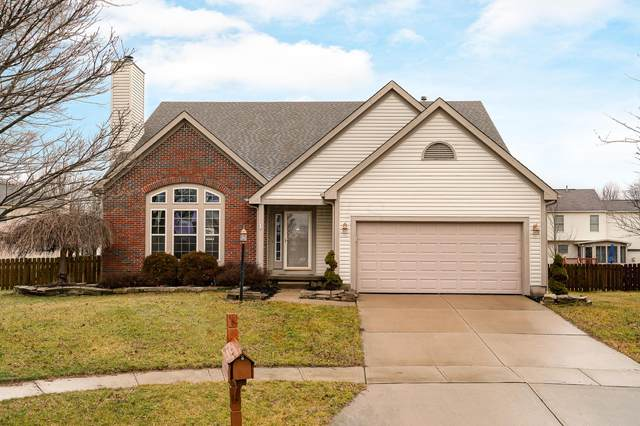 6566 Danbury Drive, Westerville, OH 43082 (MLS #220007771) :: Huston Home Team