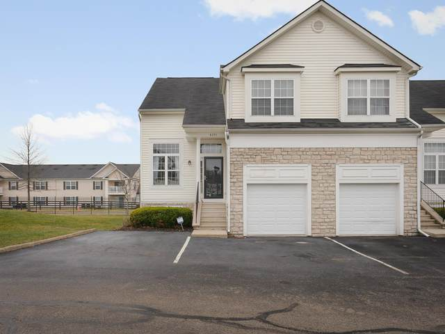 8293 Deering Oaks Drive, Blacklick, OH 43004 (MLS #220008309) :: Sam Miller Team