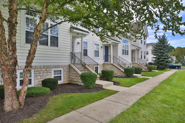 7094 Fonso Drive, New Albany, OH 43054 (MLS #220009504) :: Keller Williams Excel