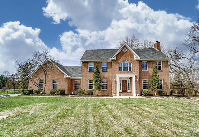 1550 Africa Road, Galena, OH 43021 (MLS #220009568) :: ERA Real Solutions Realty