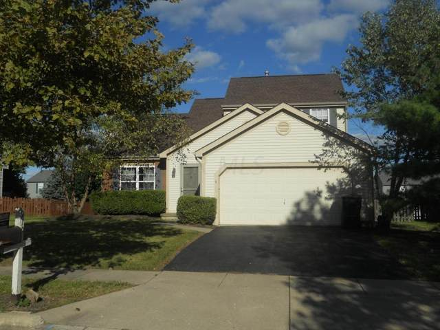 9104 Longstone Drive, Lewis Center, OH 43035 (MLS #220009610) :: Angel Oak Group