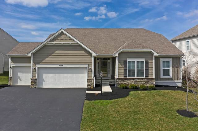 6596 Scioto Chase Boulevard, Powell, OH 43065 (MLS #220009635) :: Angel Oak Group