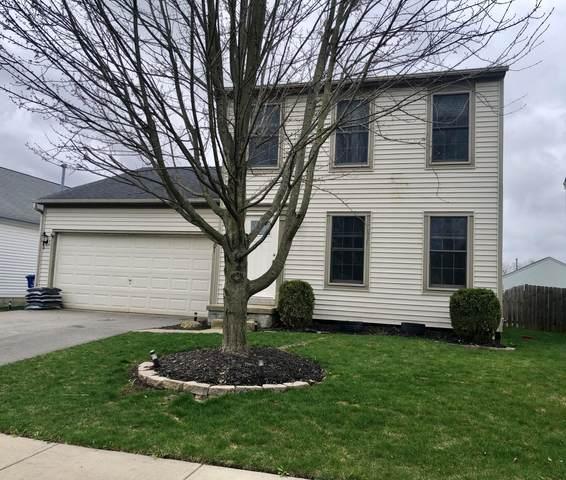 8501 Arlen Drive, Blacklick, OH 43004 (MLS #220009797) :: Julie & Company