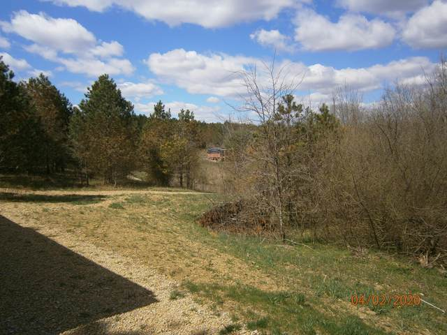 9365 Ridgeview Road, Chandlersville, OH 43727 (MLS #220009881) :: Signature Real Estate